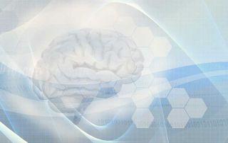 Brain-0011-880x