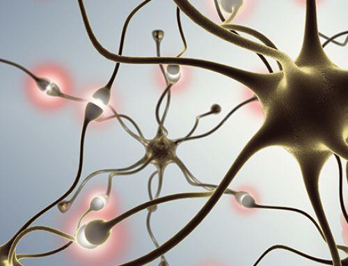 Whitepaper: Neuroscience of Change